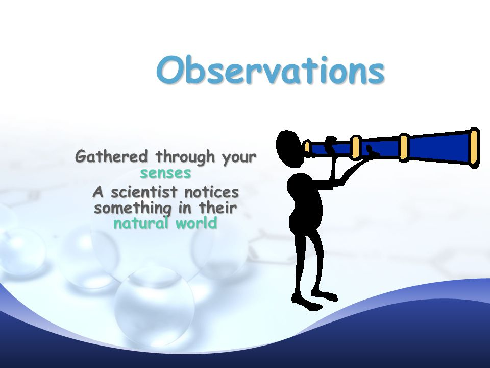 Observations Gathered through your senses A scientist notices something in their natural world