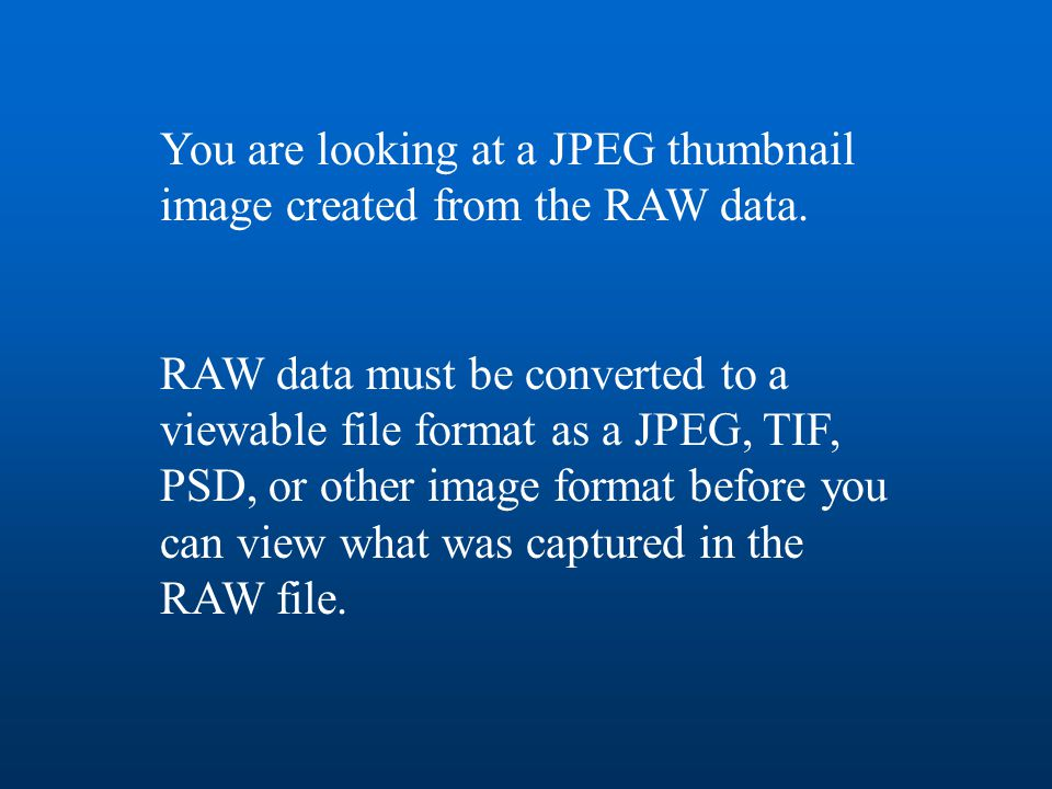 You are looking at a JPEG thumbnail image created from the RAW data. RAW data must be converted to a viewable file format as a JPEG, TIF, PSD, or othe