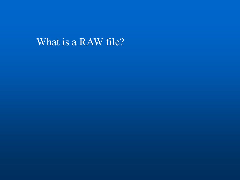 What is a RAW file?