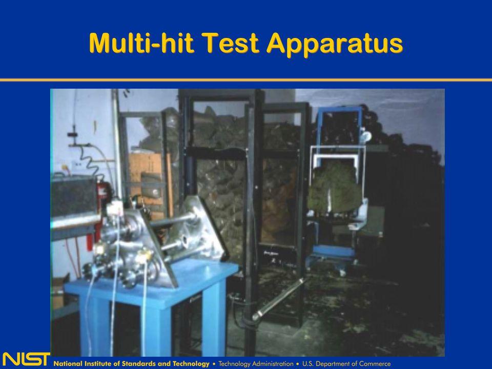Multi-hit Test Apparatus