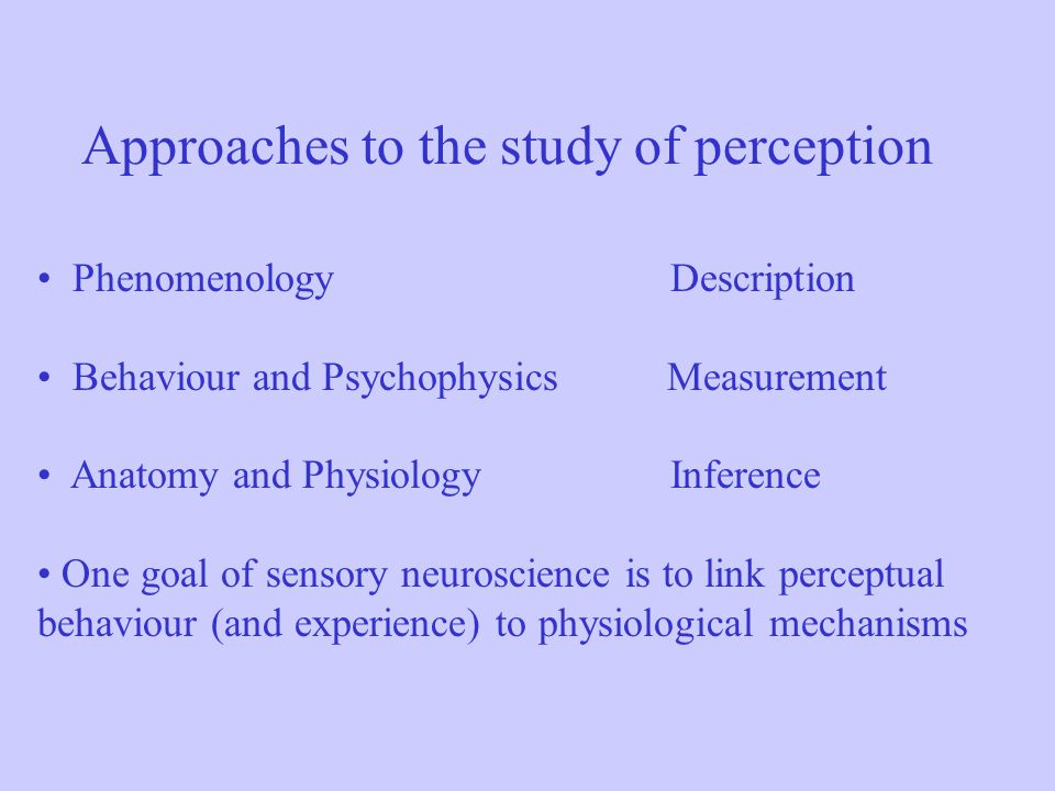 Approaches to the study of perception PhenomenologyDescription Behaviour and Psychophysics Measurement Anatomy and PhysiologyInference One goal of sen