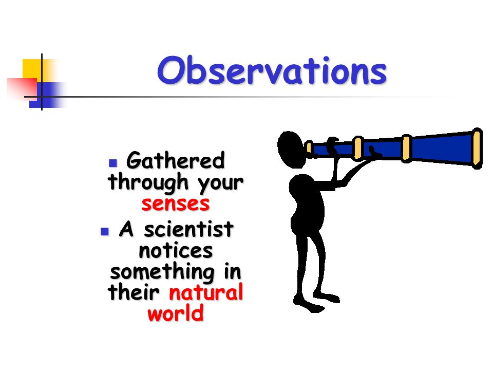 Observations Gathered through your senses Gathered through your senses A scientist notices something in their natural world A scientist notices someth