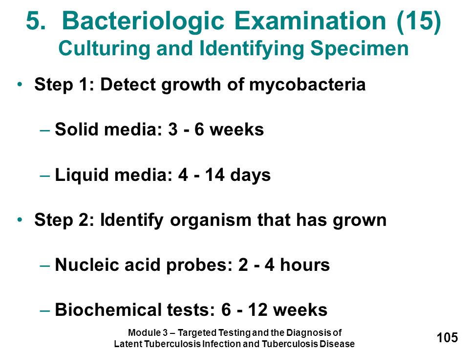 Module 3 – Targeted Testing and the Diagnosis of Latent Tuberculosis Infection and Tuberculosis Disease 105 5. Bacteriologic Examination (15) Culturin