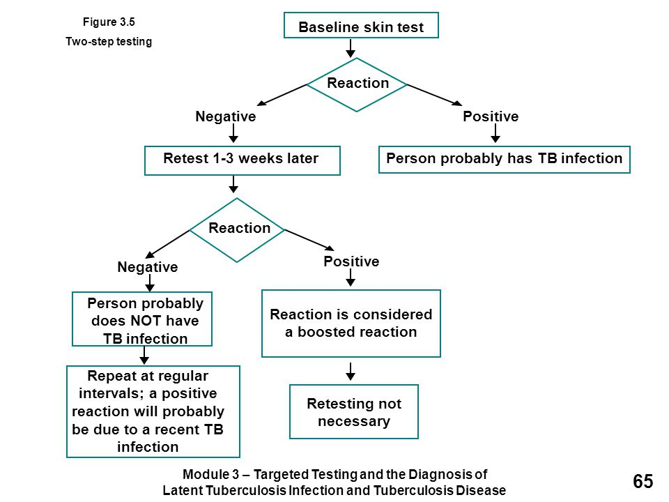 Module 3 – Targeted Testing and the Diagnosis of Latent Tuberculosis Infection and Tuberculosis Disease 65 Baseline skin test Reaction NegativePositiv
