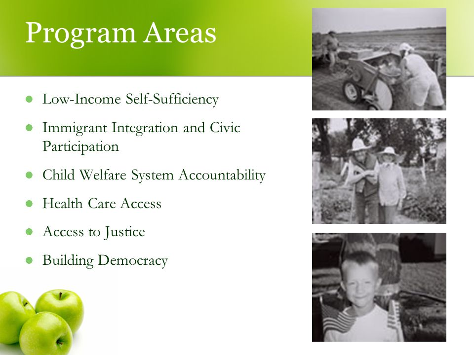 Program Areas Low-Income Self-Sufficiency Immigrant Integration and Civic Participation Child Welfare System Accountability Health Care Access Access to Justice Building Democracy