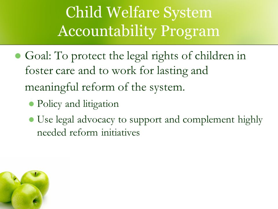 Child Welfare System Accountability Program Goal: To protect the legal rights of children in foster care and to work for lasting and meaningful reform of the system.