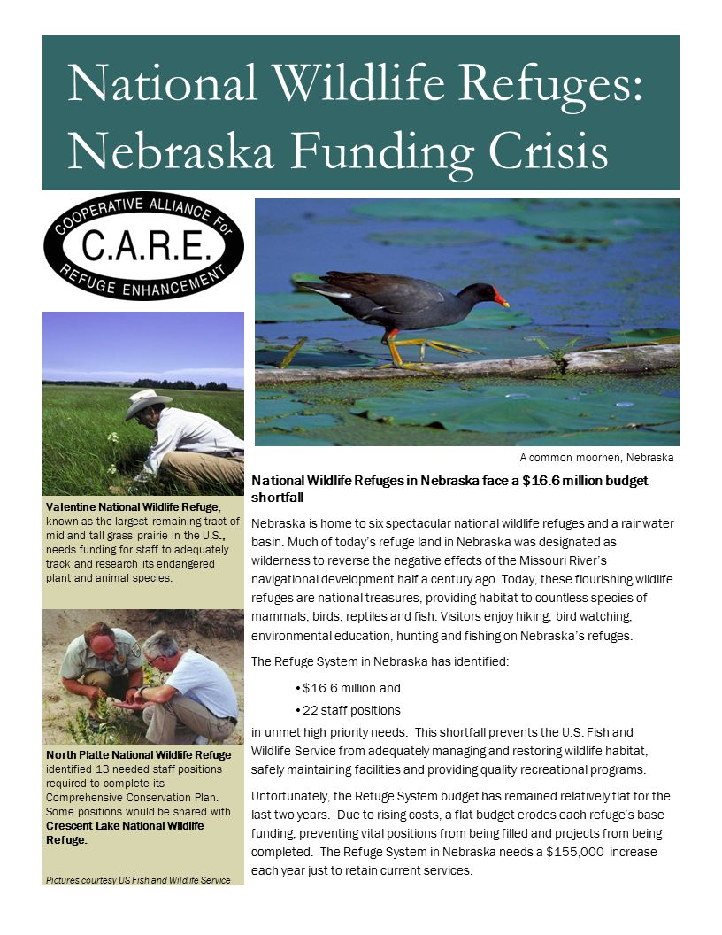 National Wildlife Refuges in Nebraska face a $16.6 million budget shortfall Nebraska is home to six spectacular national wildlife refuges and a rainwater basin.