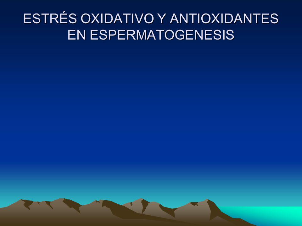 ESTRÉS OXIDATIVO Y ANTIOXIDANTES EN ESPERMATOGENESIS