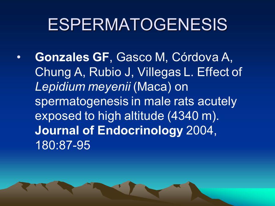 ESPERMATOGENESIS Gonzales GF, Gasco M, Córdova A, Chung A, Rubio J, Villegas L. Effect of Lepidium meyenii (Maca) on spermatogenesis in male rats acut
