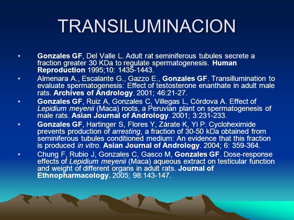TRANSILUMINACION Gonzales GF, Del Valle L. Adult rat seminiferous tubules secrete a fraction greater 30 KDa to regulate spermatogenesis. Human Reprodu