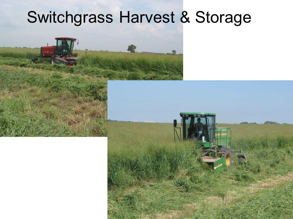 Switchgrass Harvest & Storage