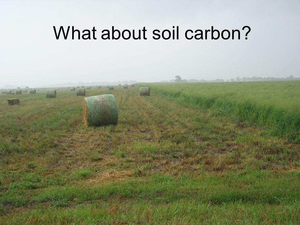 What about soil carbon?