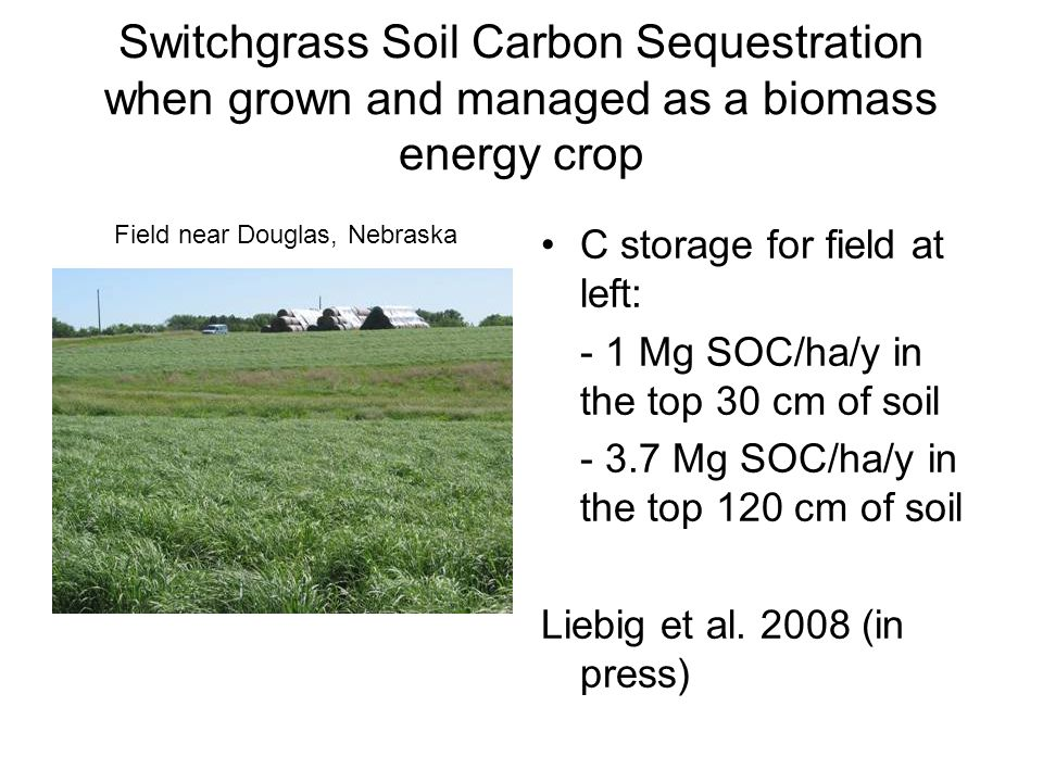 Switchgrass Soil Carbon Sequestration when grown and managed as a biomass energy crop C storage for field at left: - 1 Mg SOC/ha/y in the top 30 cm of