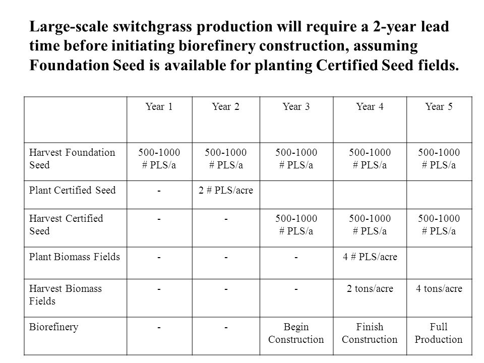 Large-scale switchgrass production will require a 2-year lead time before initiating biorefinery construction, assuming Foundation Seed is available f