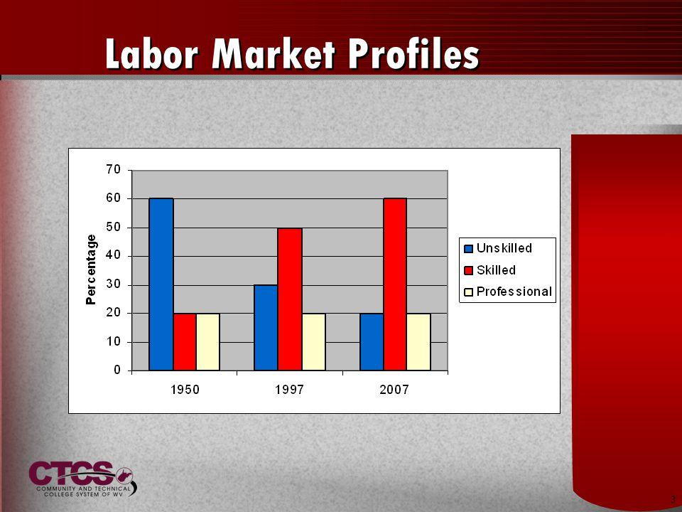 3 Labor Market Profiles