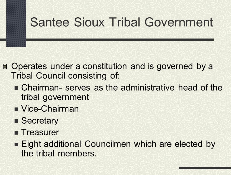 Santee Sioux Tribal Government Operates under a constitution and is governed by a Tribal Council consisting of: Chairman- serves as the administrative head of the tribal government Vice-Chairman Secretary Treasurer Eight additional Councilmen which are elected by the tribal members.