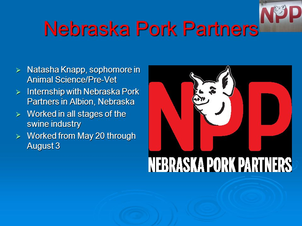 Nebraska Pork Partners  Natasha Knapp, sophomore in Animal Science/Pre-Vet  Internship with Nebraska Pork Partners in Albion, Nebraska  Worked in all stages of the swine industry  Worked from May 20 through August 3