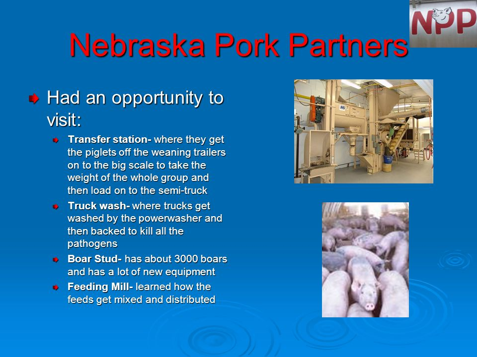 Nebraska Pork Partners Had an opportunity to visit: Transfer station- where they get the piglets off the weaning trailers on to the big scale to take the weight of the whole group and then load on to the semi-truck Truck wash- where trucks get washed by the powerwasher and then backed to kill all the pathogens Boar Stud- has about 3000 boars and has a lot of new equipment Feeding Mill- learned how the feeds get mixed and distributed