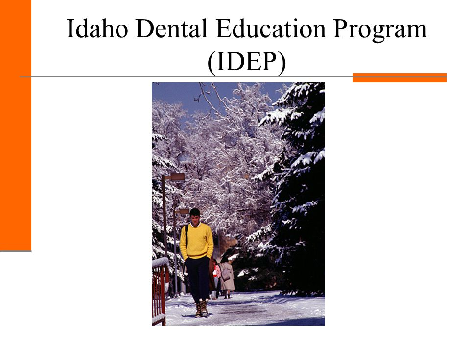 Idaho Dental Education Program Small class size Currently 8 students in each class 8:1 student to faculty ratio in dental classes One-On-One individualized attention with faculty Allows students to get a solid start to their dental education Class size of about 85 students at Creighton for years 2-4