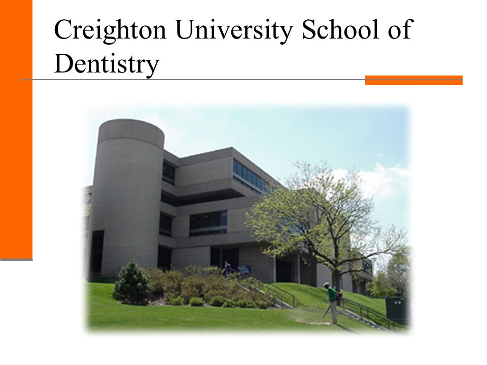 Idaho Dental Education Program First Year at Idaho State Complete Basic Sciences Curriculum Introductory Dental Sciences Clinical Occlusion Project Radiology Lab Oral Hygiene Techniques Course