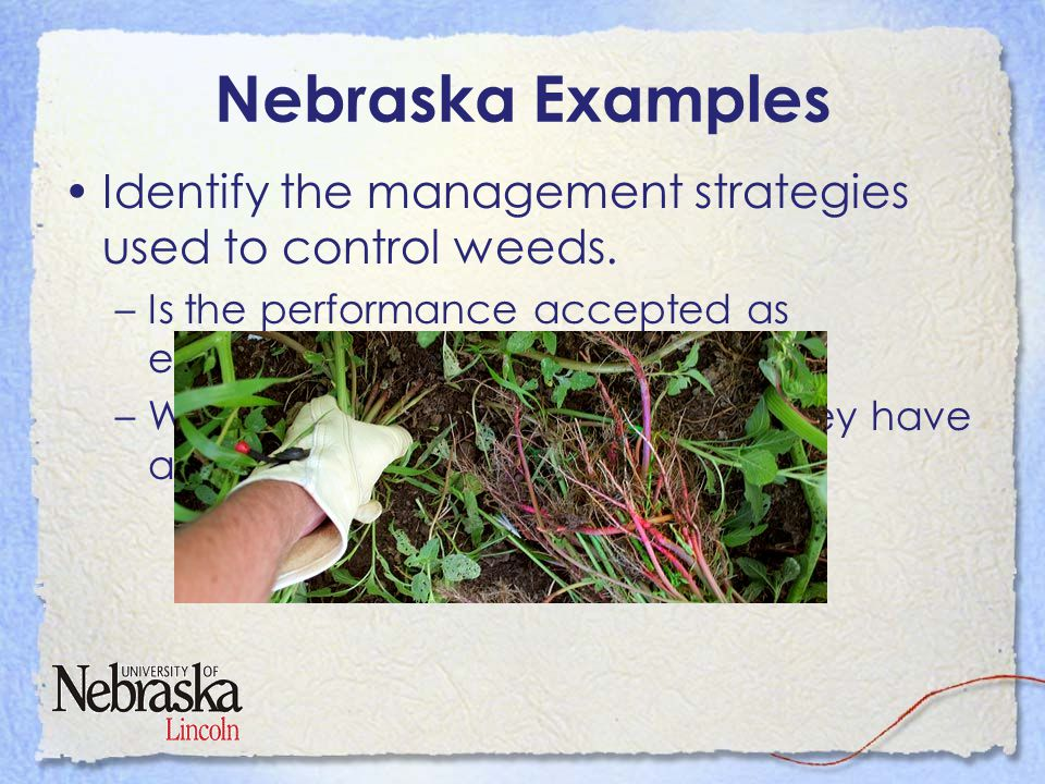 Nebraska Examples Become aware of some of the state's threatened and endangered species and where they occur.