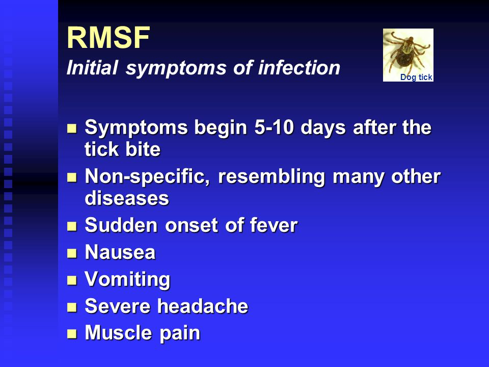Symptoms begin 5-10 days after the tick bite Symptoms begin 5-10 days after the tick bite Non-specific, resembling many other diseases Non-specific, resembling many other diseases Sudden onset of fever Sudden onset of fever Nausea Nausea Vomiting Vomiting Severe headache Severe headache Muscle pain Muscle pain RMSF Initial symptoms of infection Dog tick