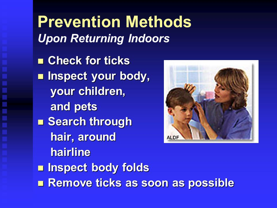 Prevention Methods Upon Returning Indoors Check for ticks Check for ticks Inspect your body, Inspect your body, your children, your children, and pets and pets Search through Search through hair, around hair, around hairline hairline Inspect body folds Inspect body folds Remove ticks as soon as possible Remove ticks as soon as possible ALDF