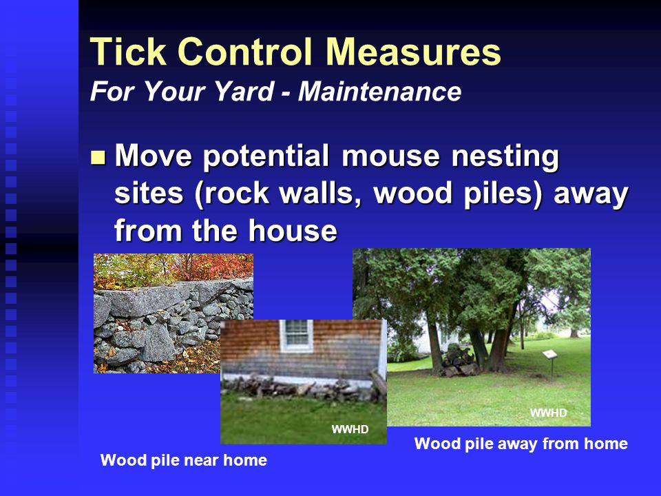 Tick Control Measures For Your Yard - Maintenance Move potential mouse nesting sites (rock walls, wood piles) away from the house Move potential mouse nesting sites (rock walls, wood piles) away from the house Wood pile near home Wood pile away from home WWHD