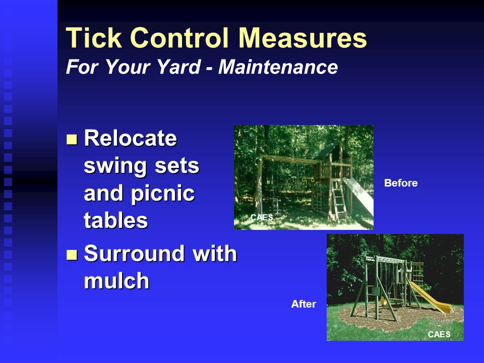 Tick Control Measures For Your Yard - Maintenance Relocate swing sets and picnic tables Relocate swing sets and picnic tables Surround with mulch Surround with mulch CAES Before After