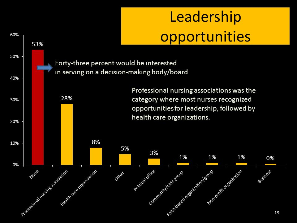 19 Leadership opportunities Forty-three percent would be interested in serving on a decision-making body/board Professional nursing associations was the category where most nurses recognized opportunities for leadership, followed by health care organizations.