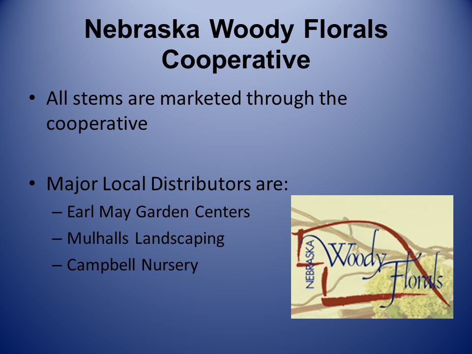 Nebraska Woody Florals Cooperative All stems are marketed through the cooperative Major Local Distributors are: – Earl May Garden Centers – Mulhalls Landscaping – Campbell Nursery