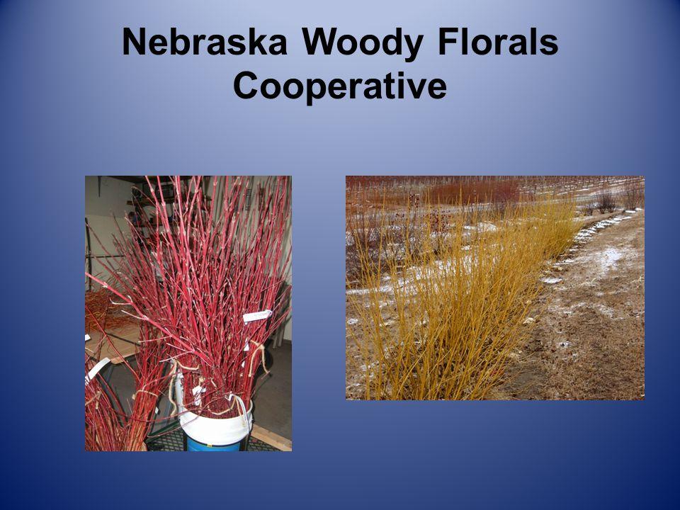Nebraska Woody Florals Cooperative