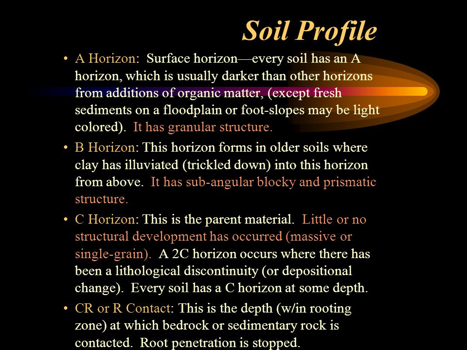 Soil Profile A Horizon: Surface horizon—every soil has an A horizon, which is usually darker than other horizons from additions of organic matter, (except fresh sediments on a floodplain or foot-slopes may be light colored).