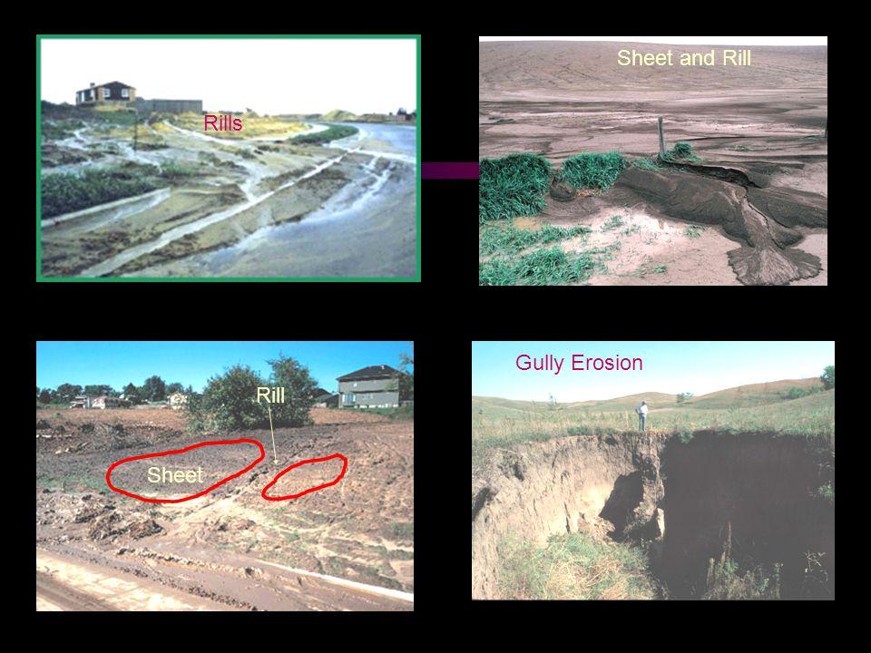 Sheet Rill Gully Erosion Sheet and Rill Rills