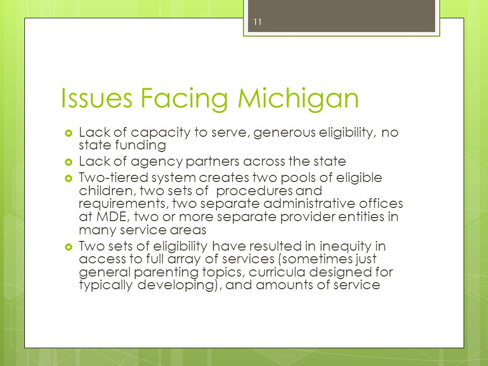 Issues Facing Michigan  Lack of capacity to serve, generous eligibility, no state funding  Lack of agency partners across the state  Two-tiered sys