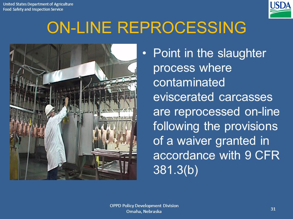 United States Department of Agriculture Food Safety and Inspection Service ON-LINE REPROCESSING Point in the slaughter process where contaminated evis