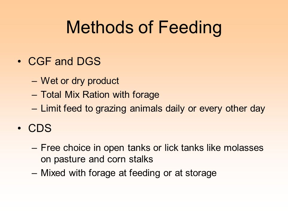 Methods of Feeding CGF and DGS –Wet or dry product –Total Mix Ration with forage –Limit feed to grazing animals daily or every other day CDS –Free choice in open tanks or lick tanks like molasses on pasture and corn stalks –Mixed with forage at feeding or at storage