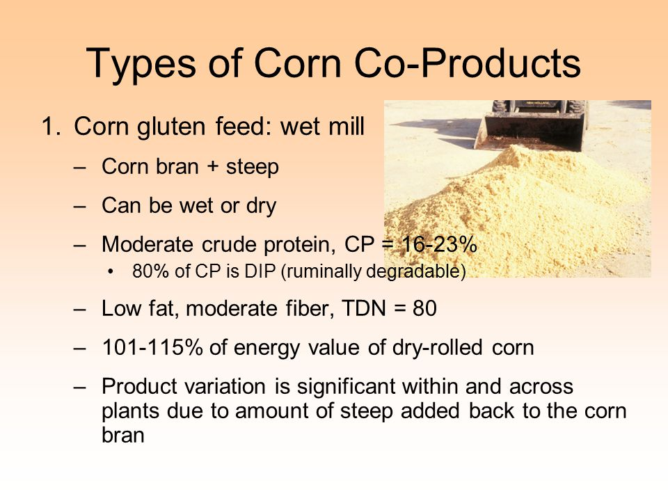 Types of Corn Co-Products 1.Corn gluten feed: wet mill –Corn bran + steep –Can be wet or dry –Moderate crude protein, CP = 16-23% 80% of CP is DIP (ruminally degradable) –Low fat, moderate fiber, TDN = 80 –101-115% of energy value of dry-rolled corn –Product variation is significant within and across plants due to amount of steep added back to the corn bran