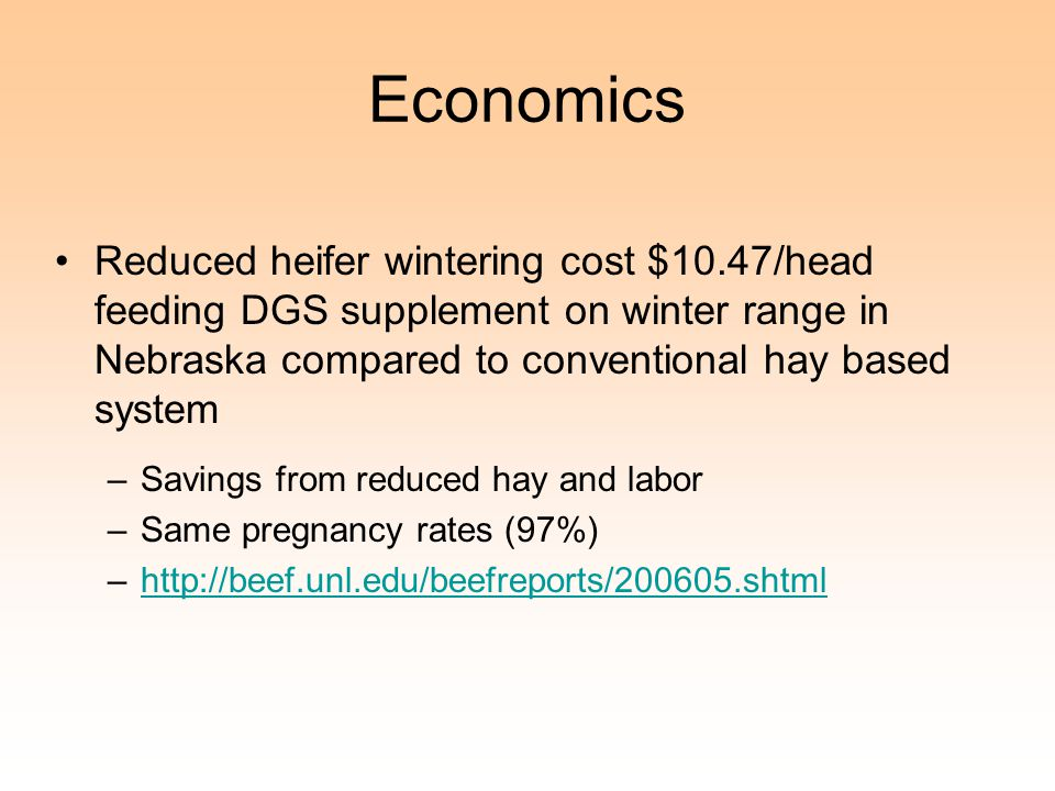 Economics Reduced heifer wintering cost $10.47/head feeding DGS supplement on winter range in Nebraska compared to conventional hay based system –Savings from reduced hay and labor –Same pregnancy rates (97%) –http://beef.unl.edu/beefreports/200605.shtmlhttp://beef.unl.edu/beefreports/200605.shtml