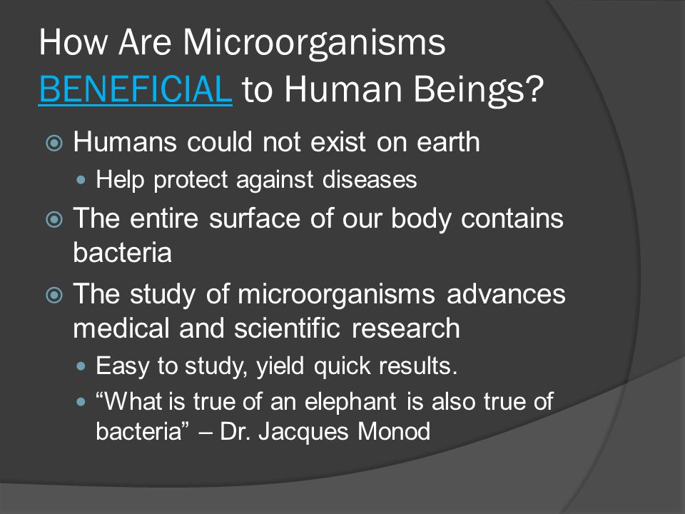 How Are Microorganisms BENEFICIAL to Human Beings.