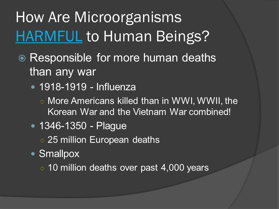 How Are Microorganisms HARMFUL to Human Beings?  Responsible for more human deaths than any war 1918-1919 - Influenza ○ More Americans killed than in