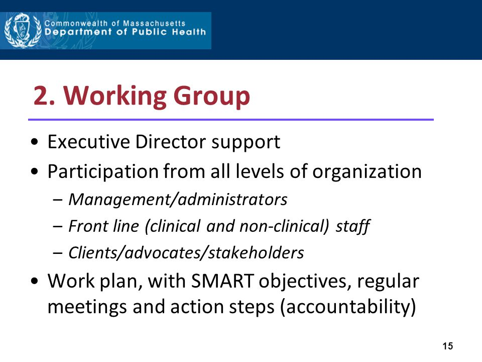 2. Working Group Executive Director support Participation from all levels of organization –Management/administrators –Front line (clinical and non-cli