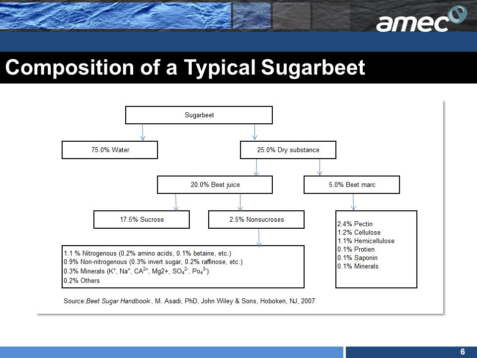 6 Composition of a Typical Sugarbeet