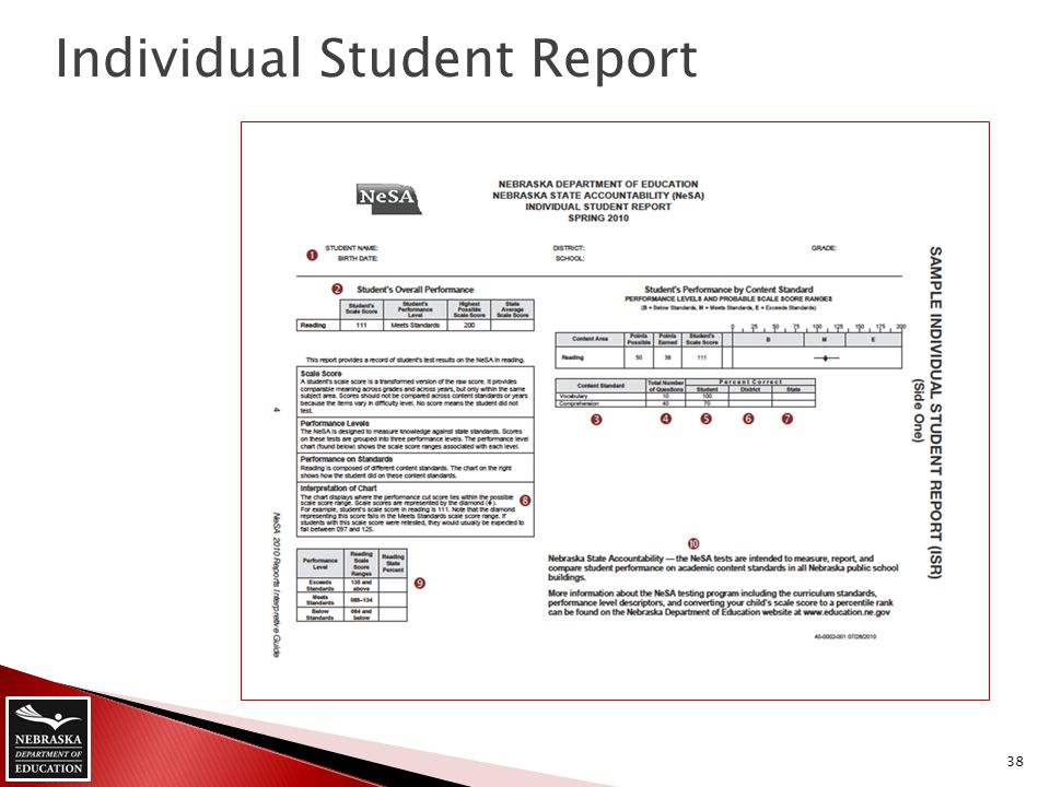 Individual Student Report 38