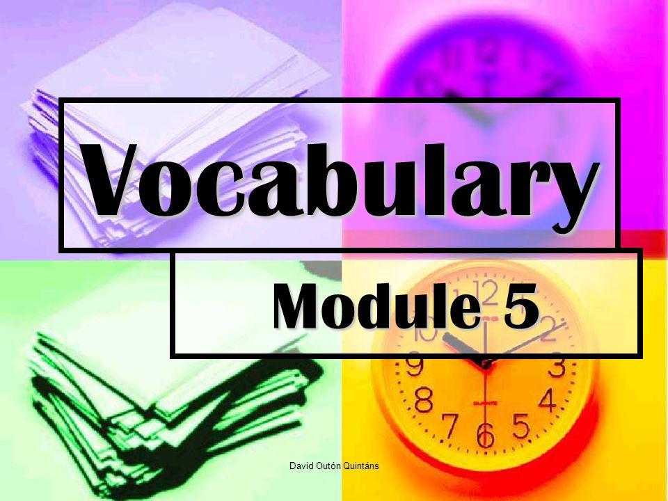 Vocabulary Module 5 David Outón Quintáns