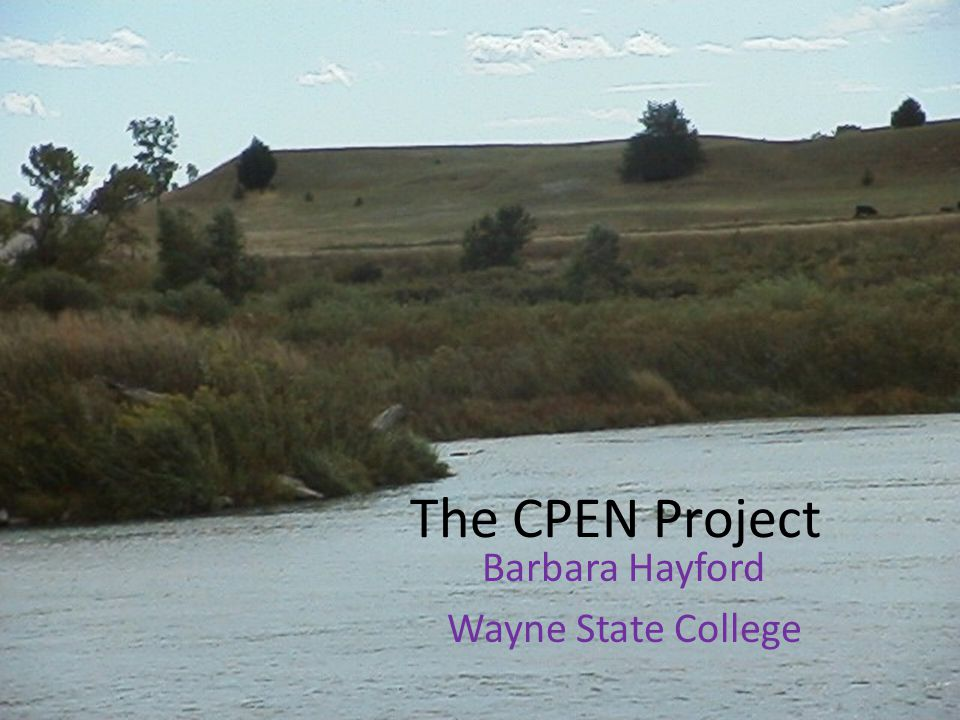 The CPEN Project Barbara Hayford Wayne State College