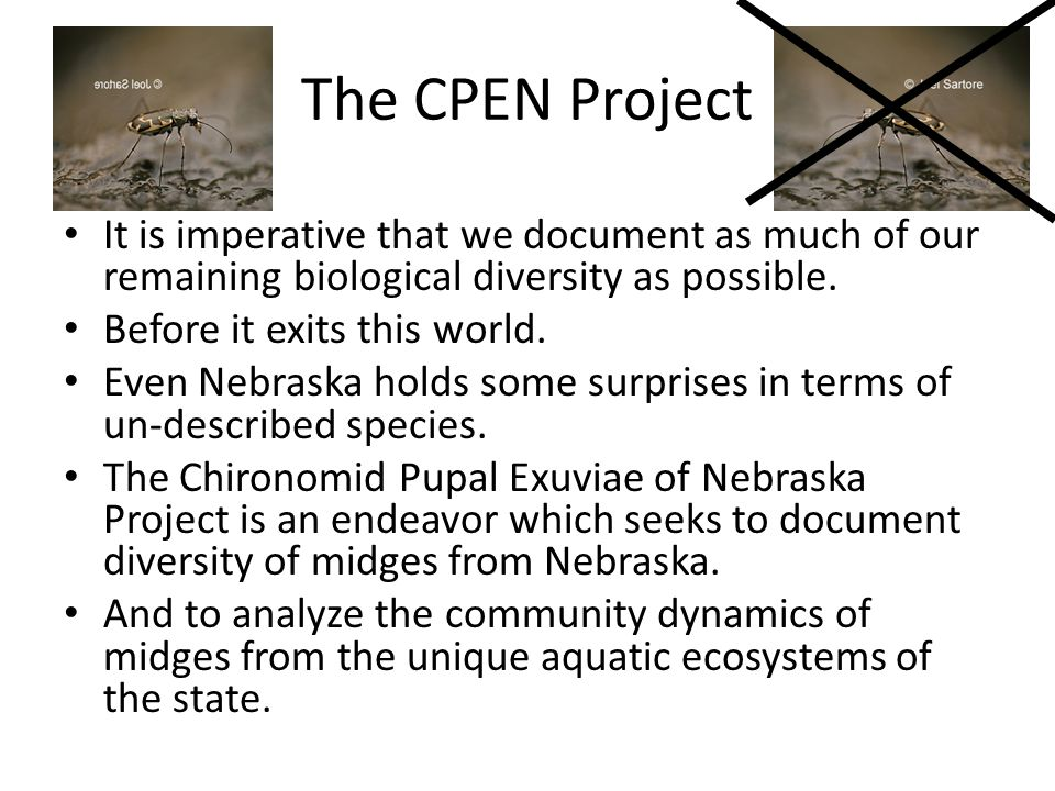 The CPEN Project It is imperative that we document as much of our remaining biological diversity as possible.