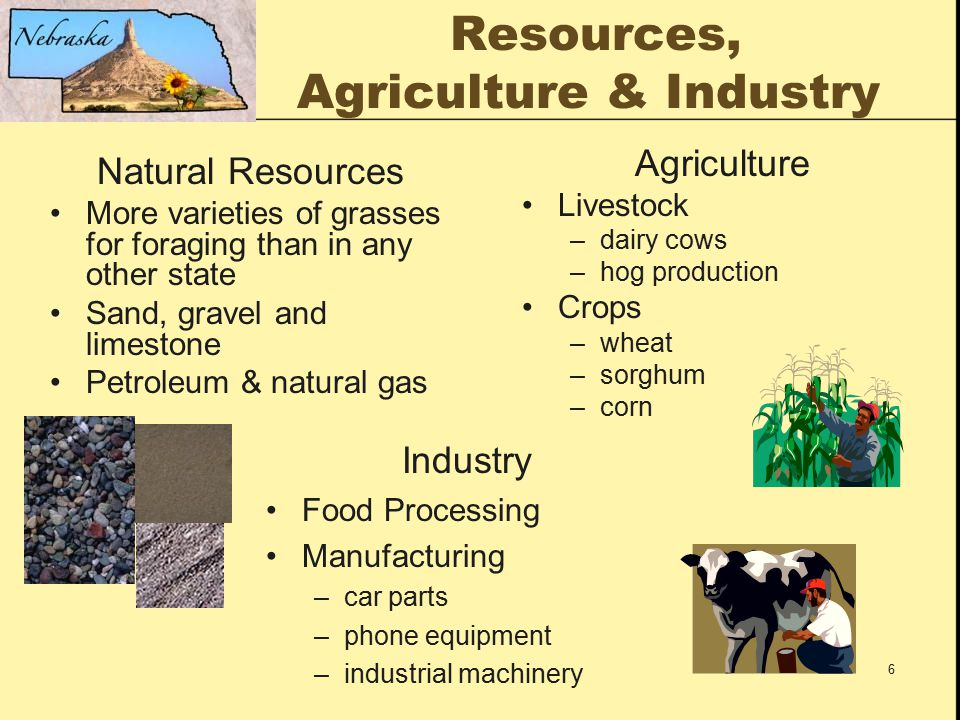 6 Resources, Agriculture & Industry Natural Resources More varieties of grasses for foraging than in any other state Sand, gravel and limestone Petroleum & natural gas Agriculture Livestock –dairy cows –hog production Crops –wheat –sorghum –corn Industry Food Processing Manufacturing –car parts –phone equipment –industrial machinery