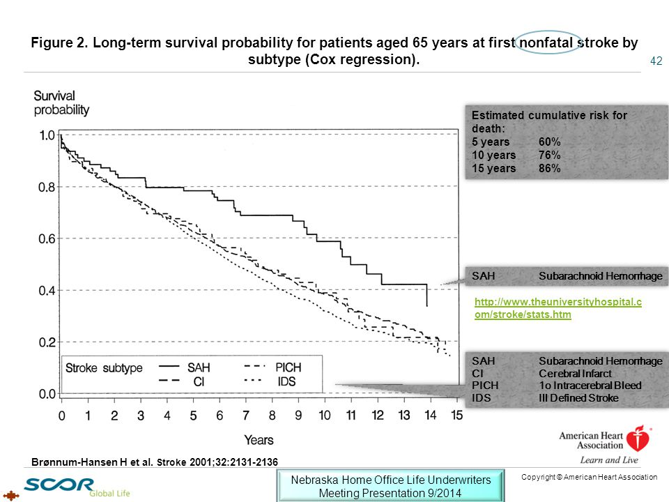 Figure 2. Long-term survival probability for patients aged 65 years at first nonfatal stroke by subtype (Cox regression). Brønnum-Hansen H et al. Stro