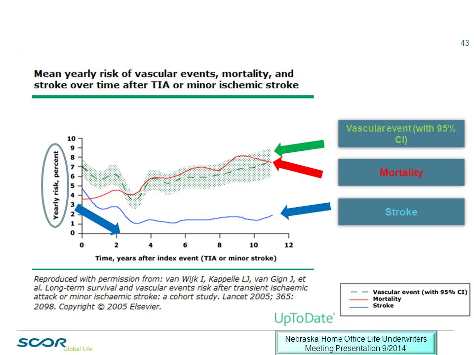 43 Vascular event (with 95% CI) Mortality Stroke Nebraska Home Office Life Underwriters Meeting Presentation 9/2014